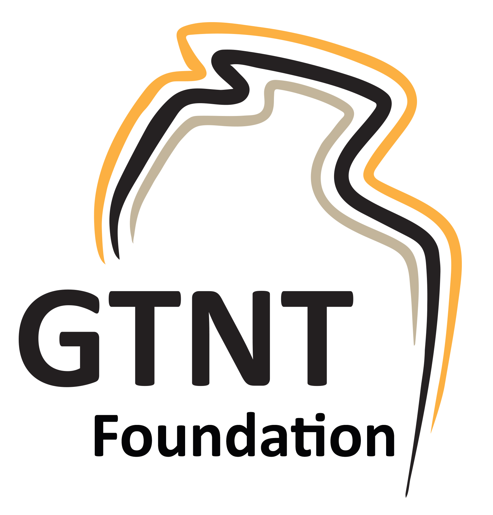 GTNT foundation
